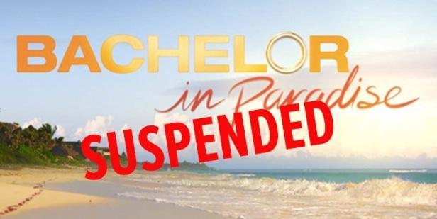 0611-bachelor-suspended-1.jpg