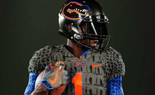 florida-swamp-alternates1.jpg